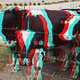 Cows3_lcows3_r_045_ca